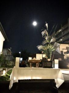 お月見の写真